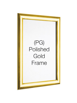 Polished Gold 25mm Profile Snap Poster Frames - Multiple Sizes